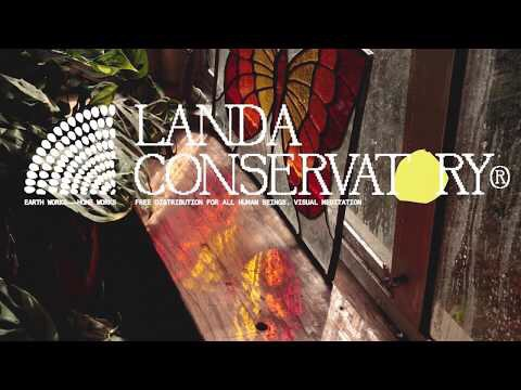 "[US🇺🇸]Landa Conservatory – ""Quiet Daybreak Sunrise Glow (Visual Meditation)"""